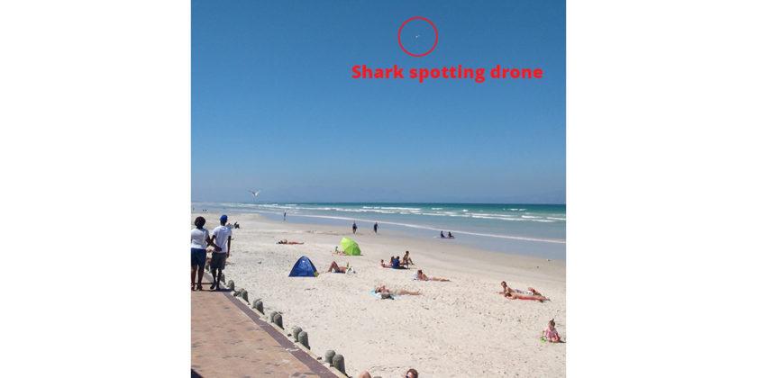 shark-spotting-drone